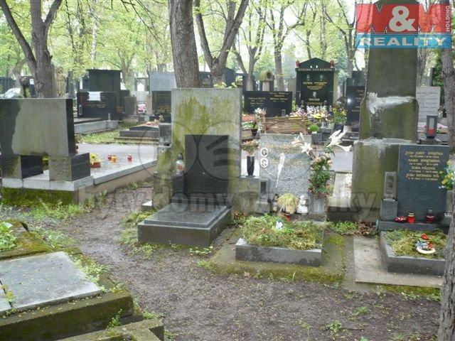 Prodej, hrob, Praha 2 - Vinohrady