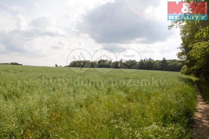 Prodej, zahrada, 14703 m2, Cholupice