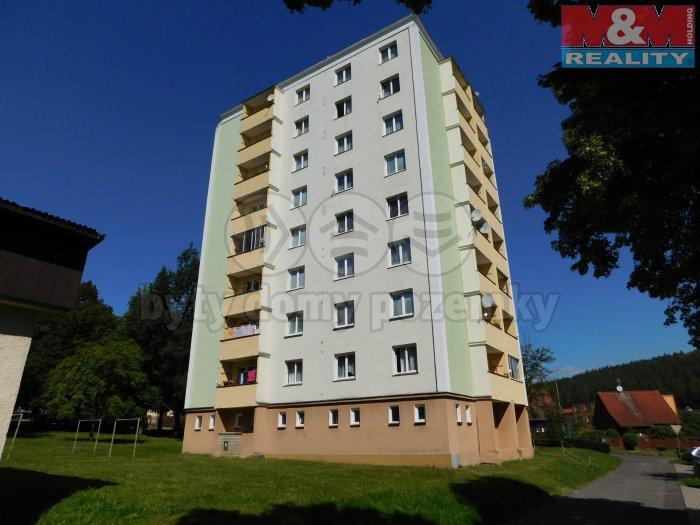 Prodej, byt 2+1, 46 m2, Nová Role, ul. Nádražní