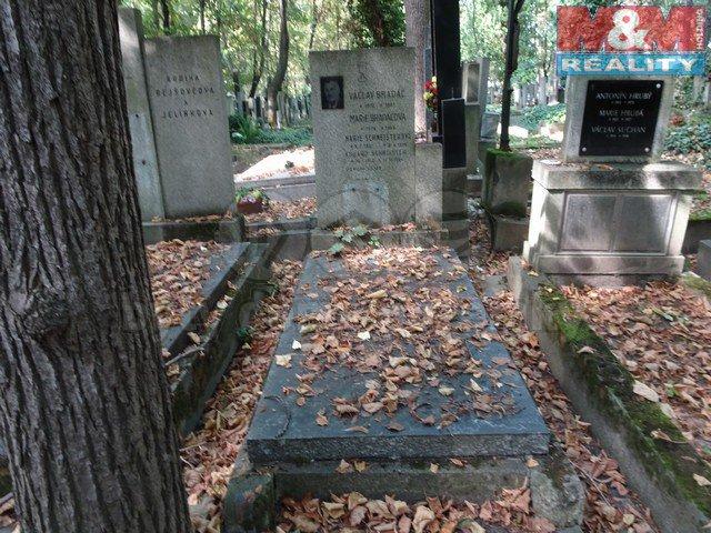 Prodej, hrob, 3 m2, Praha 3 - Žižkov, Olšanské hřbitovy