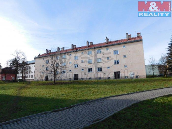 Prodej, byt 2+1, 54 m2, Horní Slavkov, ul. Dlouhá