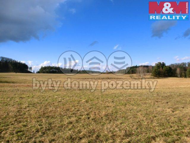 Prodej, pozemek 11394 m2, Osečná - Chrastná