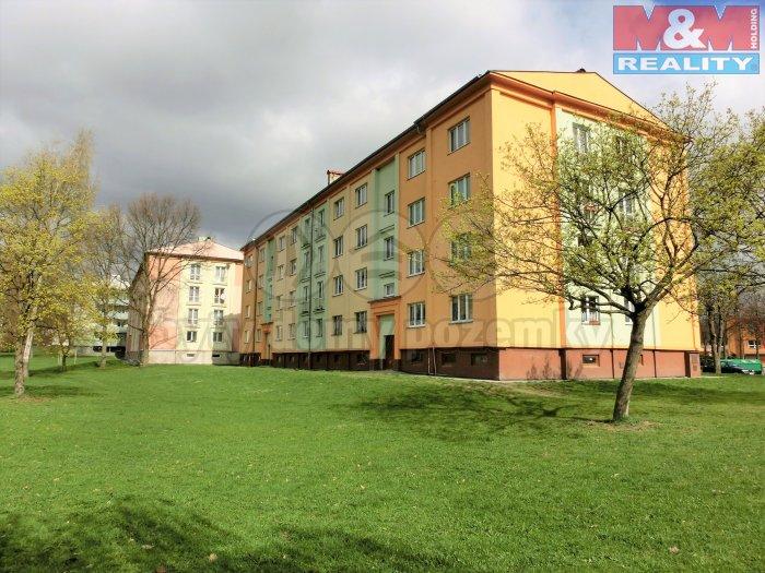 Prodej, byt 2+1, 60 m2, Nová Role
