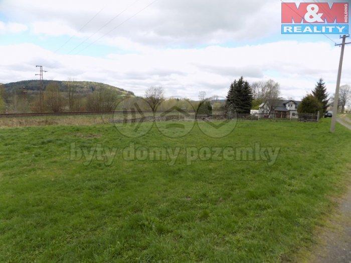 Prodej, pozemek, 4533 m2, Horní Podluží