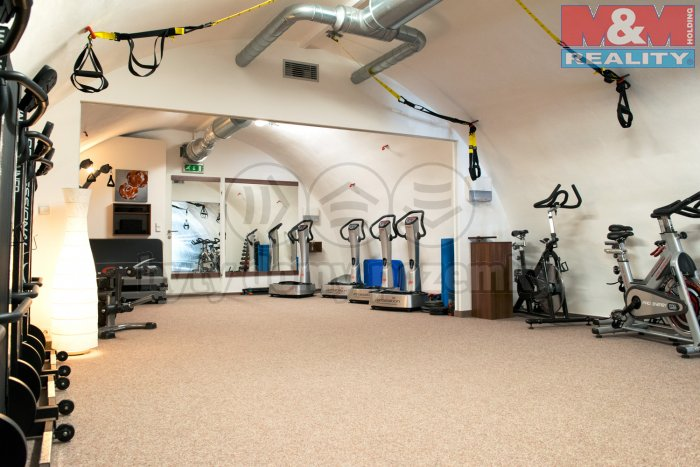 Pronájem, fitness centrum, 119 m2, Praha 7 - Holešovice