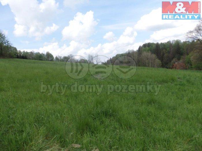 Prodej, pozemek, 10642 m2, Metylovice