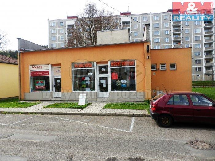 Prodej, dům, 168 m2, Kraslice, ul. Svatopluka Čecha