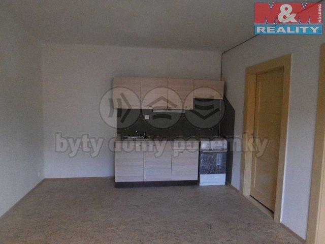 Pronájem, byt 1+1, 56 m2, Ústí nad Labem, ul. Klíšská