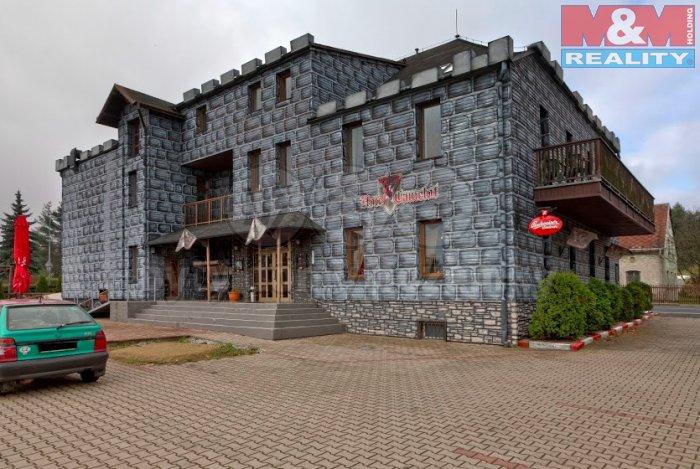 Prodej, hotel, 900 m2, Tisá