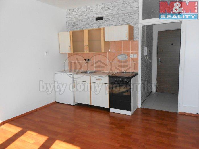 Prodej, byt 1+kk, 19 m2, Ostrov, ul. Kollárova