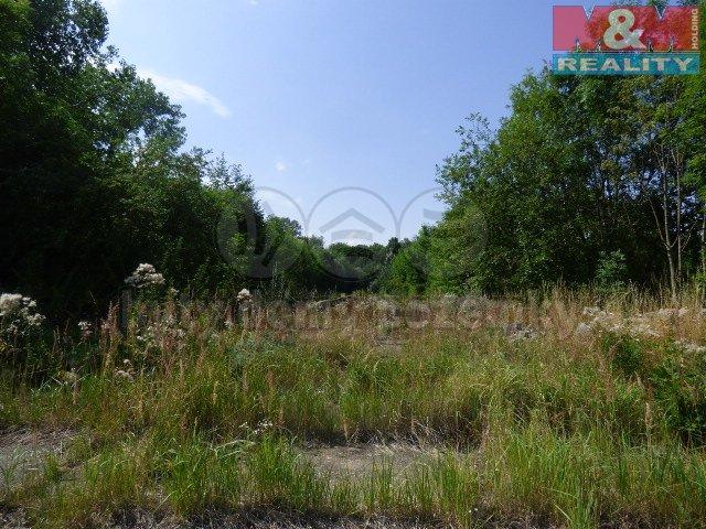 Prodej, pozemky, 5625 m2, Čáslav - Hejdof