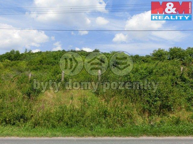 Prodej, stavební pozemek, 2650 m2, Žalhostice
