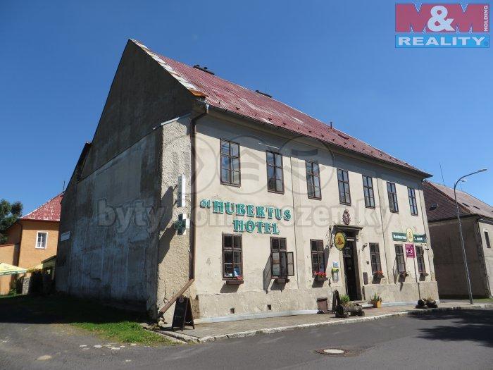 Prodej, hotel Hora Svatého Šebestiána, okr. Chomutov