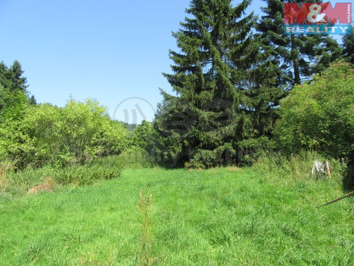 Prodej, pozemek, 4964 m2, Lázně Kynžvart