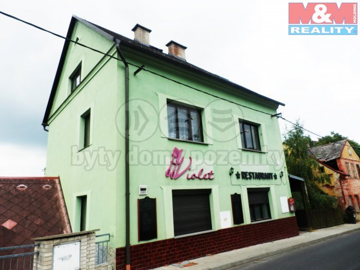Prodej, restaurace, 90 m2, Luby, ul. Masarykova