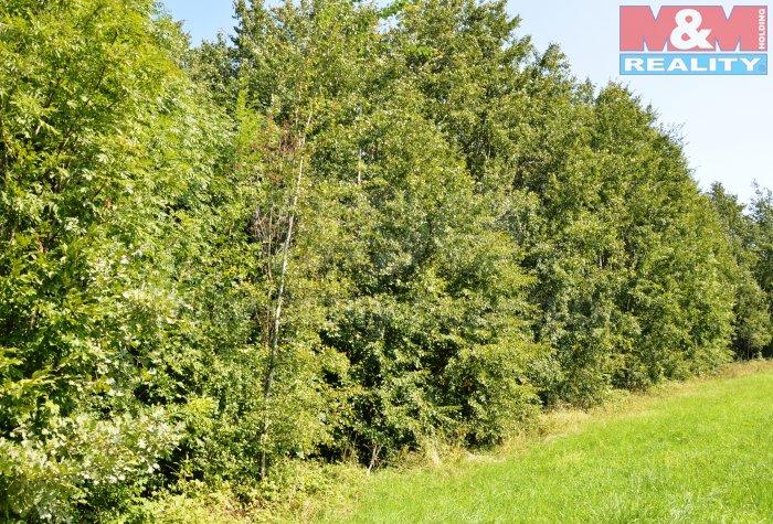 Prodej, lesní pozemek, 5.184 m2, Třinec