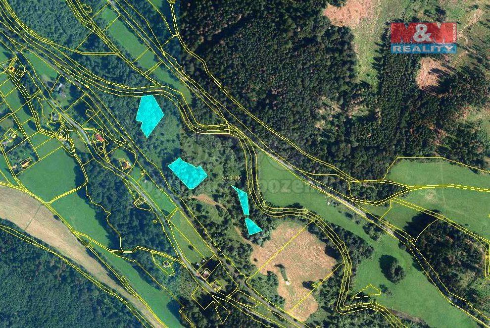 Prodej, les, 7570 m2, Široká Niva-Skrbovice