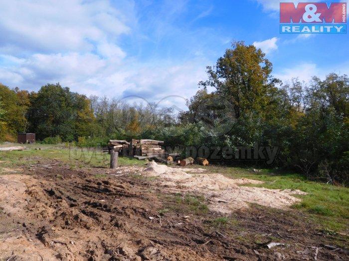 Prodej, les, 10880 m2, Ivančice