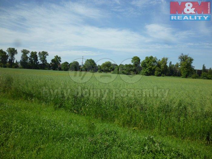 Prodej, pozemek 3658 m2, Krnov