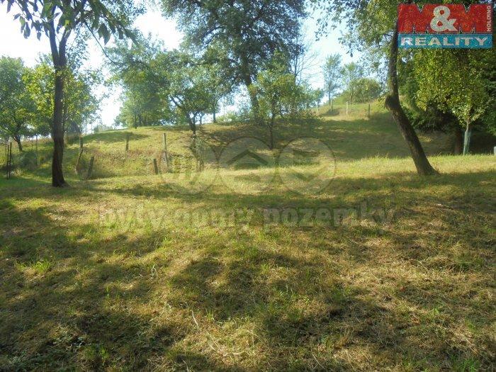 Prodej, pozemek, 3921 m2, Šarovy