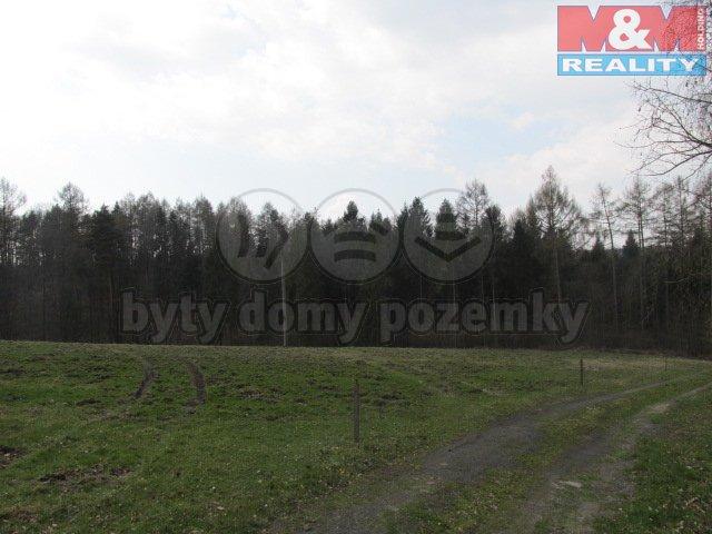 Prodej, pozemek, 7038 m2, Václavovice, les
