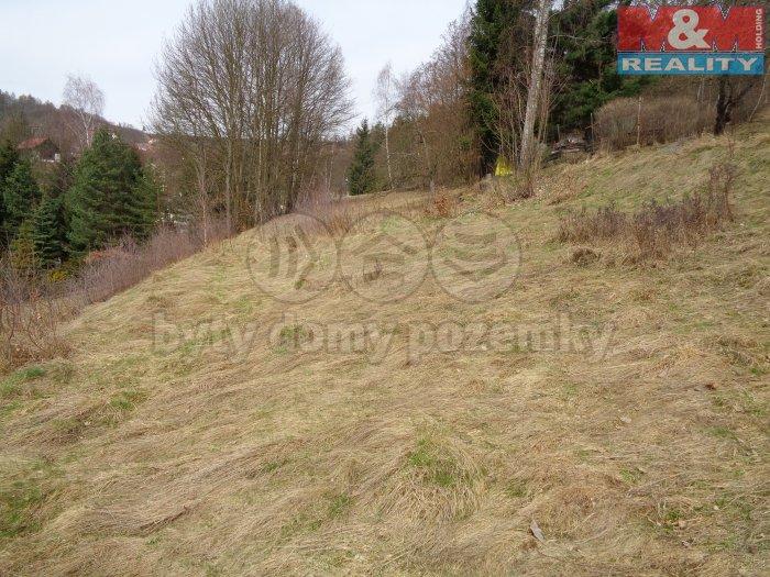 Prodej, stavební pozemek, 2770 m2, Skuhrov
