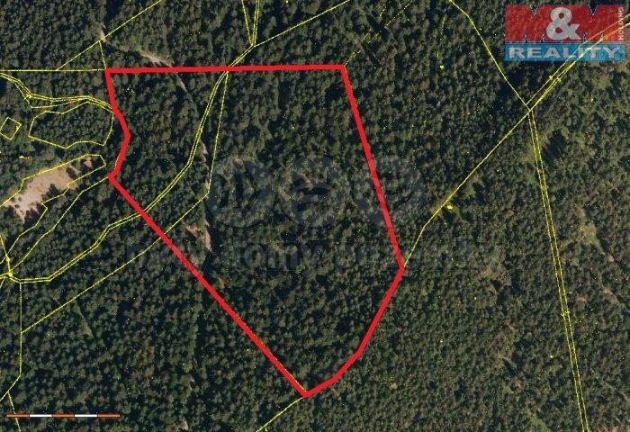 Prodej, les, 48189 m2, Horní Bečva
