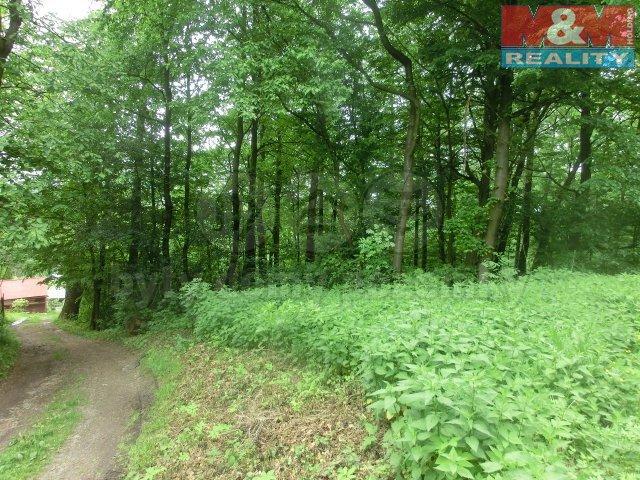 Prodej, lesní pozemek, Havířov - Dolní Datyně