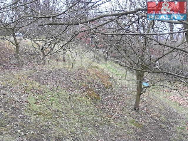 Prodej, zahrada, 600 m2, Petřkovice