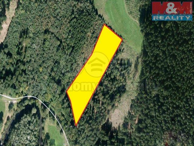 Prodej, les, 12185 m2, Malá Bystřice