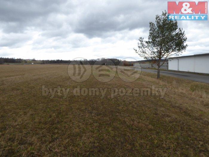 Prodej, pozemek, 7371 m2, Nová Ves u Českých Budějovic