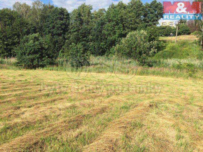 Prodej, pozemek, 3717 m2, Orlová - Lutyně, ul. Polní