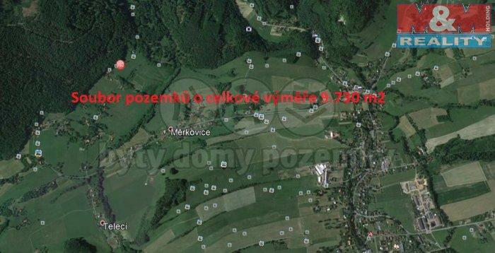 Prodej, louka, 9730 m2, Kozlovice