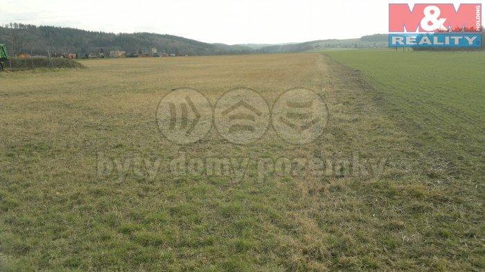 Prodej, pozemek, 5003 m2, Nové Sedlice