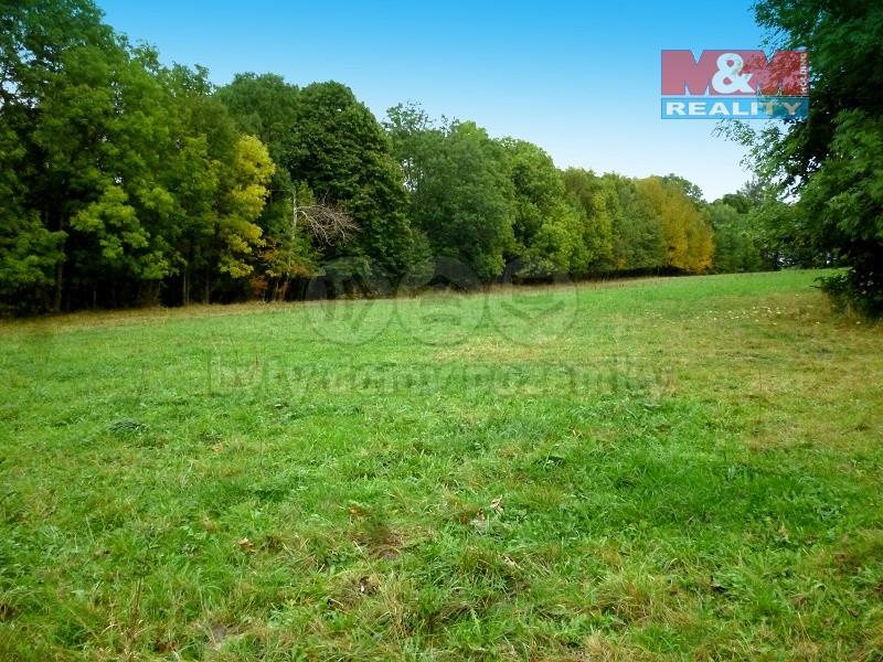 Prodej, pozemek, 9700 m2, Roudno