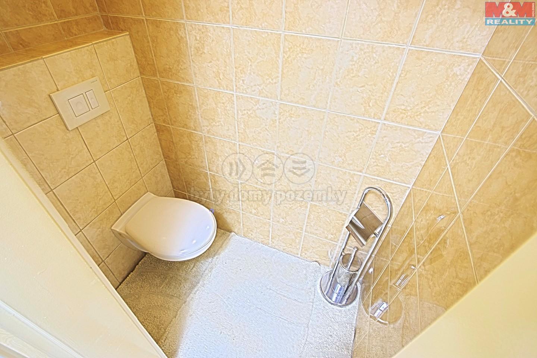 Prodej, atypický byt, 152 m2, ul. Na Fabiáně, Říčany