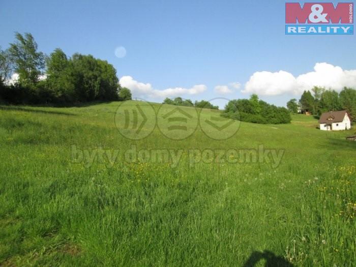 Prodej, pozemek, 7732 m2, Dolní Olešnice