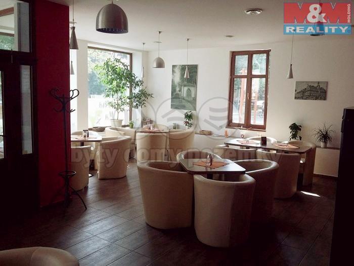 Prodej, komerční prostory, 480 m2, Krnov