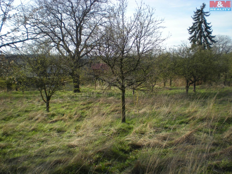 Prodej, pozemek 4229 m2, Krnov