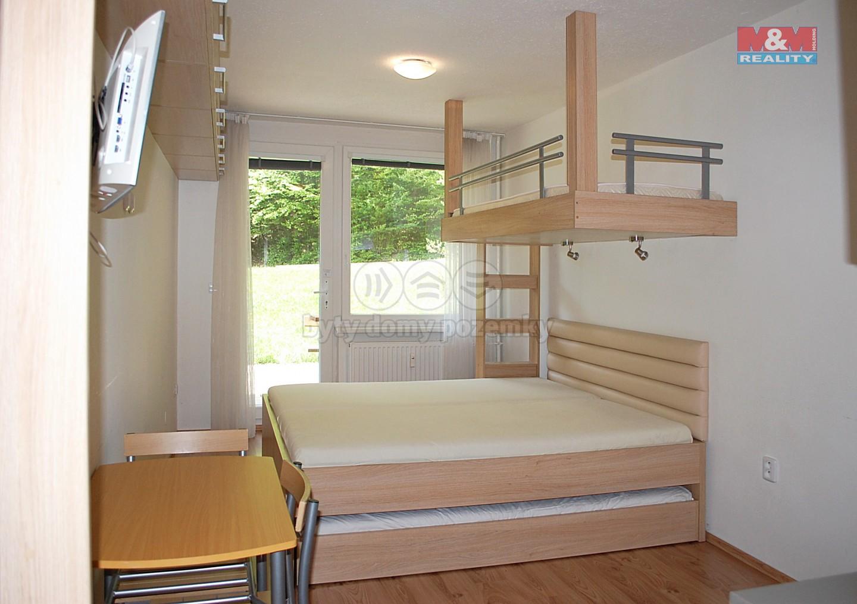 Prodej, byt 1+kk, 24 m2, Všemina