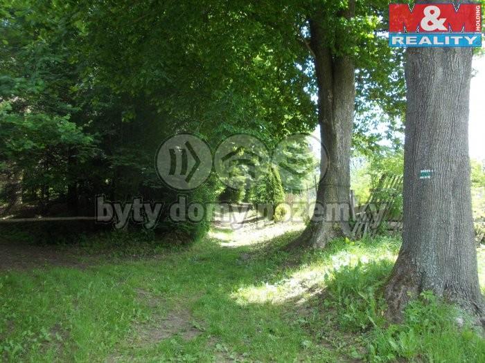 Prodej, pozemek, 18385 m2, Březiny u Poličky