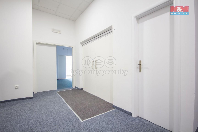 Pronájem, skladový prostor, 14 m2, Podbaba