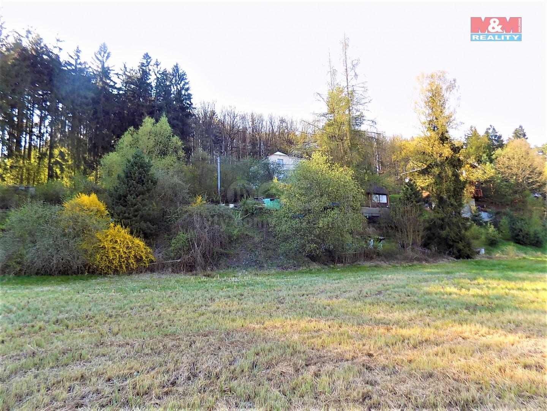 Prodej, pozemek s chatou, 771 m2, Předenice