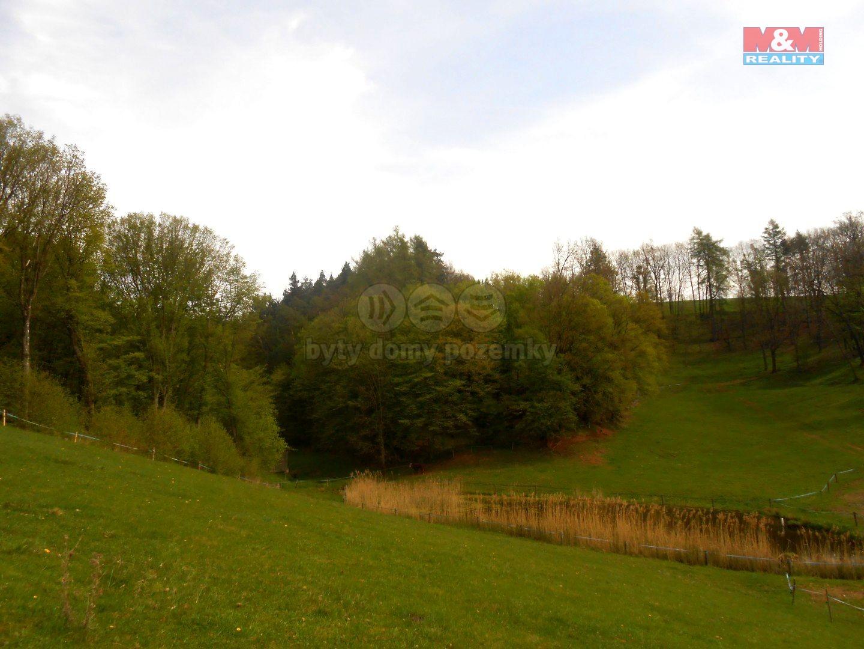 Prodej, les, Dolní Dobrouč