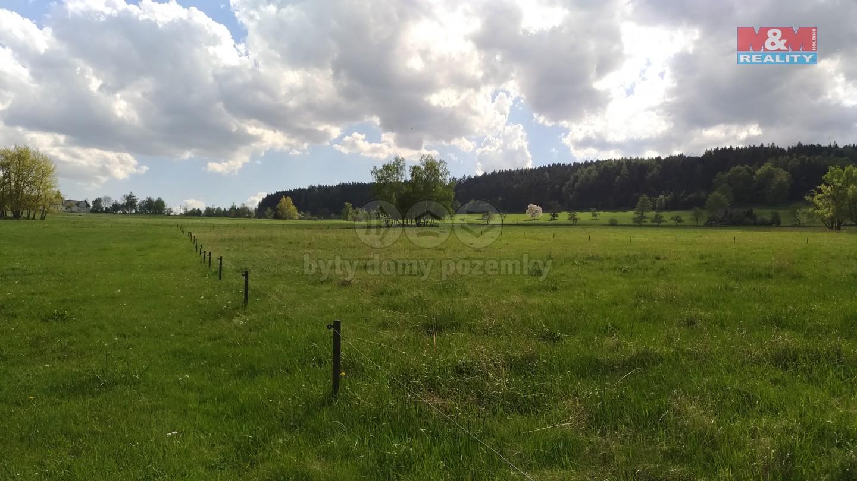 Prodej, pozemek, 11131 m2, Stachy