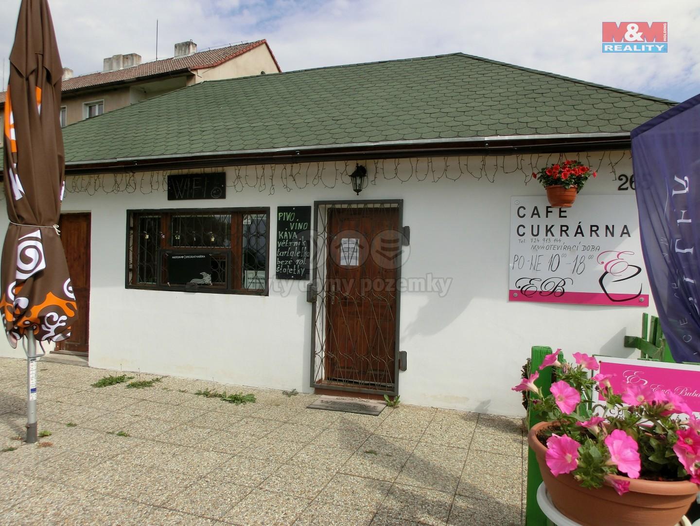 Prodej, obchod a služby 34 m2, Litvínov, ul. Lounická