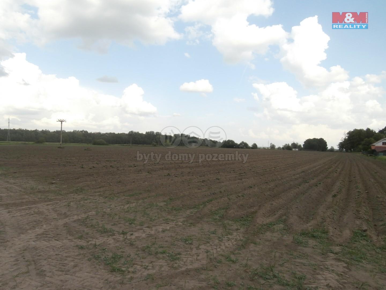 Prodej, pozemek, Dříteč, 9103 m2, spoluvlastnický podíl