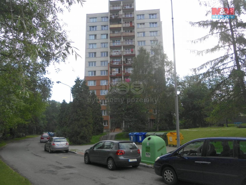 Pronájem, byt 1+kk, 30 m2, Ostrava, ul.Petruškova