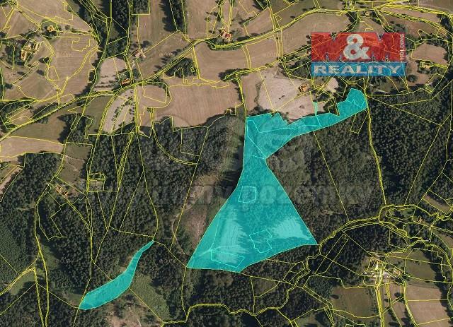 Prodej, les, 80373 m2, Valašská Bystřice