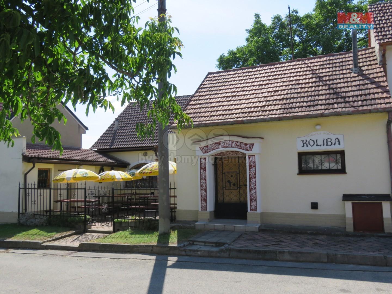 Prodej, restaurace s vinným sklepem, Dolní Bojanovice